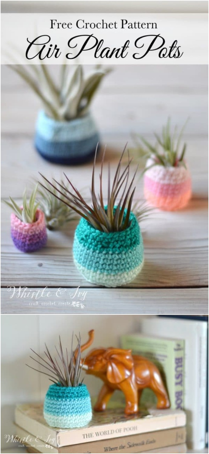 Free Crochet Air Plant Pot Pattern