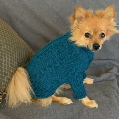 Cabled Crochet Dog Sweater Free Pattern