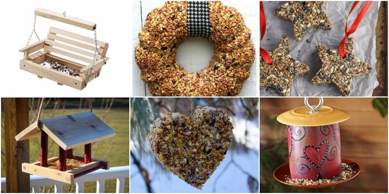 DIY Bird Feeder Ideas That Fill Your Garden With Birds