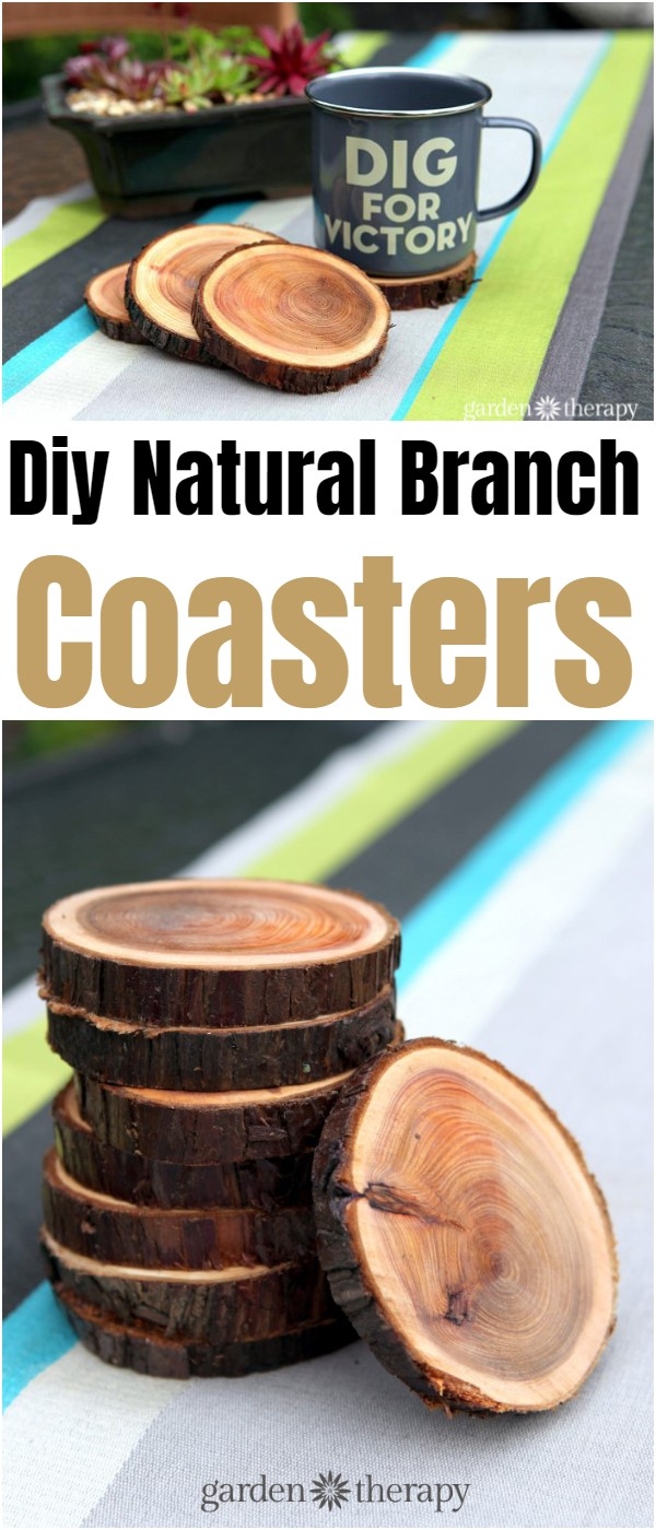 Diy Natural Branch Coasters