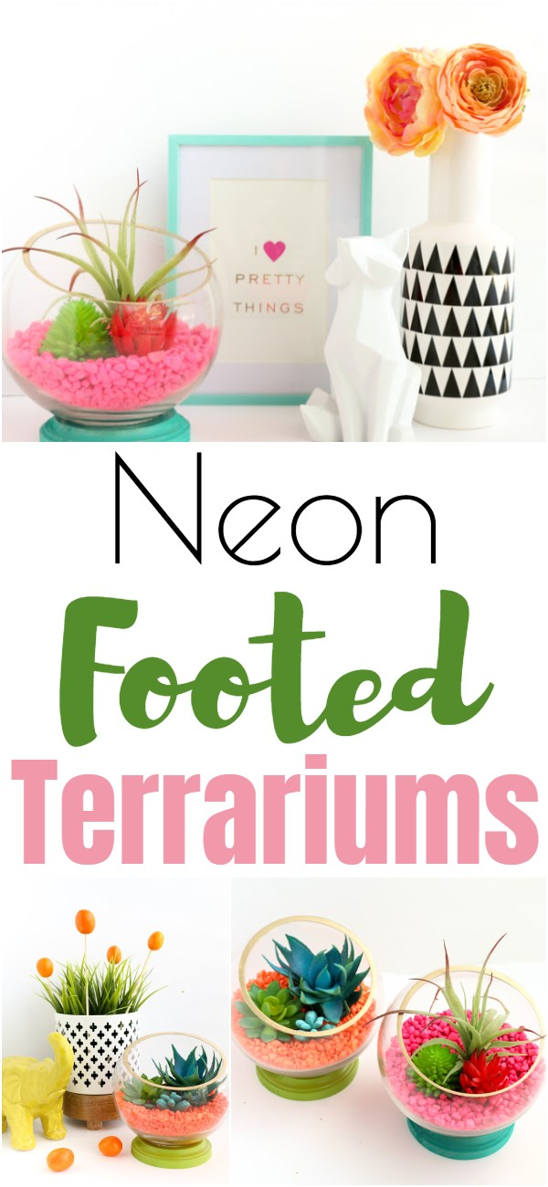 Neon Footed Terrariums